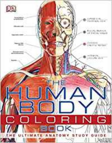 9780756682347 Human Body Coloring Book: The Ultimate Anatomy Study Guide