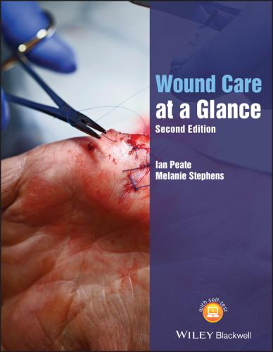 9781119590507 Wound Care At A Glance