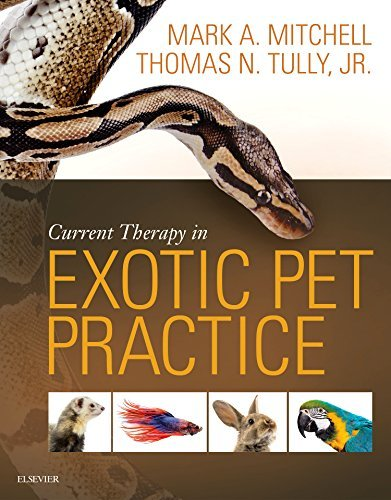 9781455740840 Current Therapy In Exotic Pet Practice