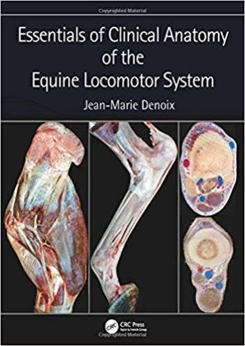 9781498754415 Essentials Of Clinical Anatomy Of The Equine Locomotor...