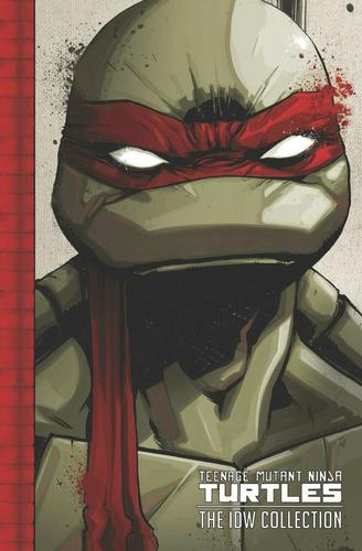 9781631401114 Teenage Mutant Ninja Turtles: The Idw Collection Vol 1
