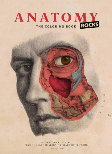 9782374950082 Anatomy Rocks: The Coloring Book
